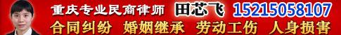 重庆田芯飞律师